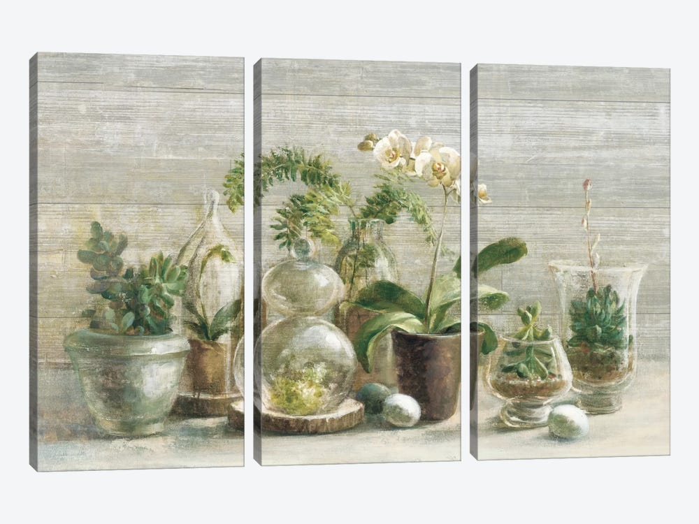 Greenhouse Orchids On Wood II by Danhui Nai 3-piece Canvas Art