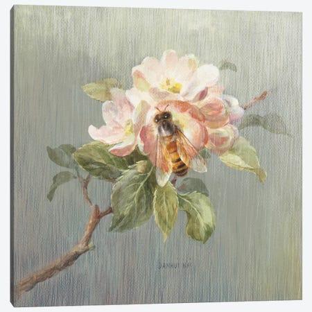 Natural Detail I Canvas Print #WAC5155} by Danhui Nai Canvas Art Print