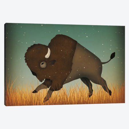 American Bison (Buffalo) Canvas Print #WAC5210} by Ryan Fowler Canvas Art Print