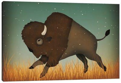 American Bison (Buffalo) Canvas Print #WAC5210