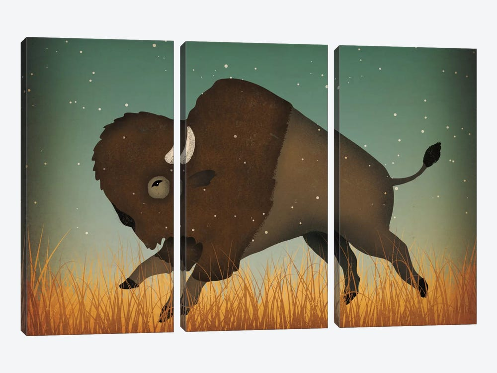 American Bison (Buffalo) 3-piece Canvas Art