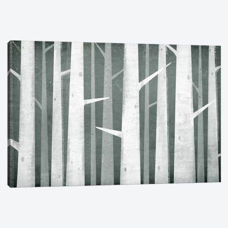 Winter Woods Birches Canvas Print #WAC5227} by Ryan Fowler Canvas Art Print