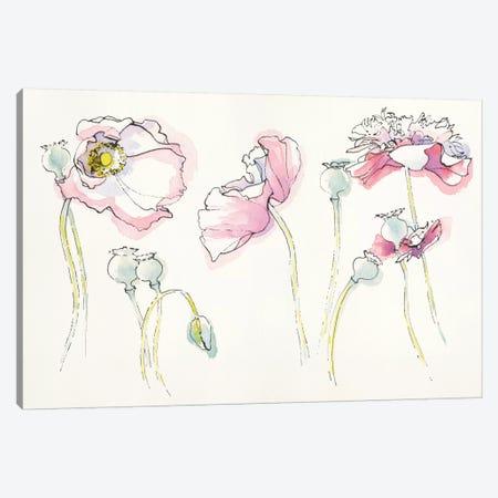 Pink Somniferums Canvas Print #WAC5228} by Shirley Novak Canvas Art