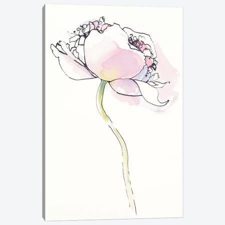 Single Pink Somniferum I Canvas Print #WAC5229} by Shirley Novak Canvas Art