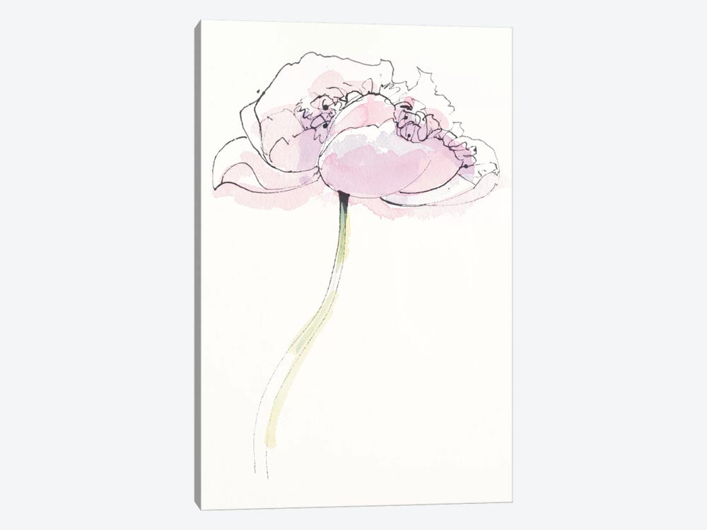 Single Pink Somniferum II by Shirley Novak 1-piece Canvas Artwork