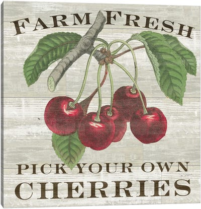 Farm Fresh Cherries Canvas Art Print