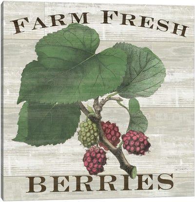 Farm Fresh Raspberries Canvas Print #WAC5245