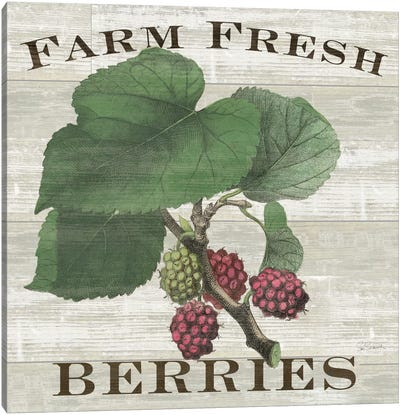 Farm Fresh Raspberries Canvas Art Print