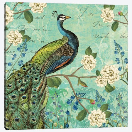 Peacock Arbor V Canvas Print #WAC5266} by Sue Schlabach Art Print