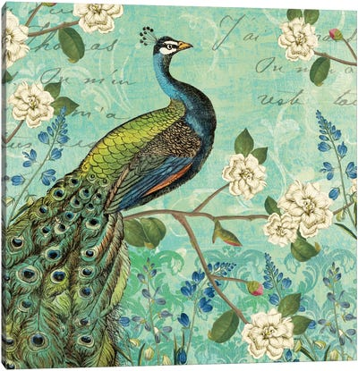 Peacock Arbor V Canvas Art Print