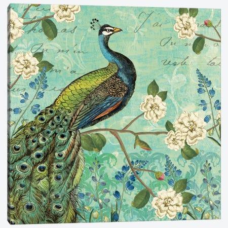 Peacock Arbor V Canvas Print #WAC5266} by Sue Schlabach Art Print