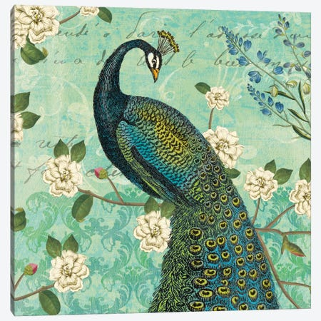 Peacock Arbor VI Canvas Print #WAC5267} by Sue Schlabach Canvas Print