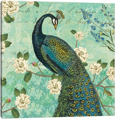 Peacock Arbor VI Canvas Art Print