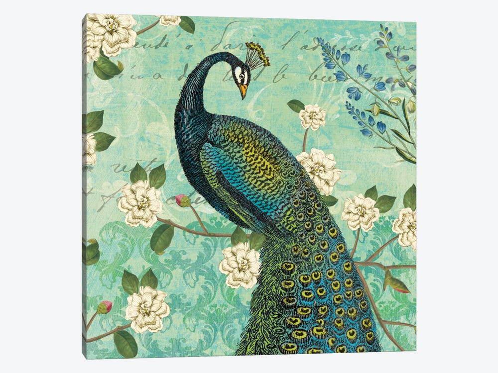 Peacock Arbor VI by Sue Schlabach 1-piece Canvas Artwork