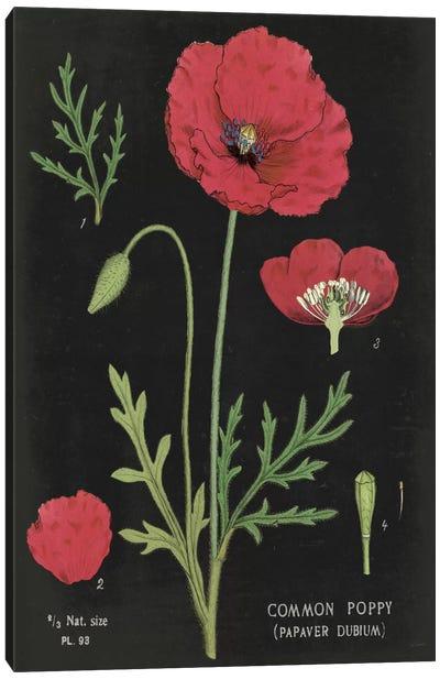 Poppy Chart Canvas Art Print