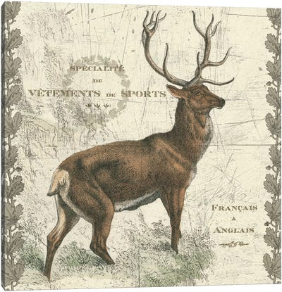 Regal Elk Canvas Art Print