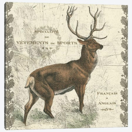 Regal Elk Canvas Print #WAC5270} by Sue Schlabach Art Print