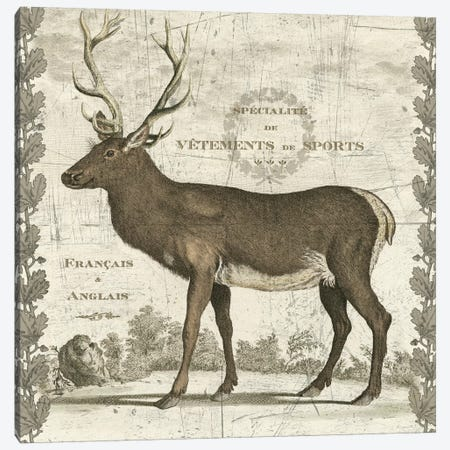 Regal Stag Canvas Print #WAC5271} by Sue Schlabach Canvas Print
