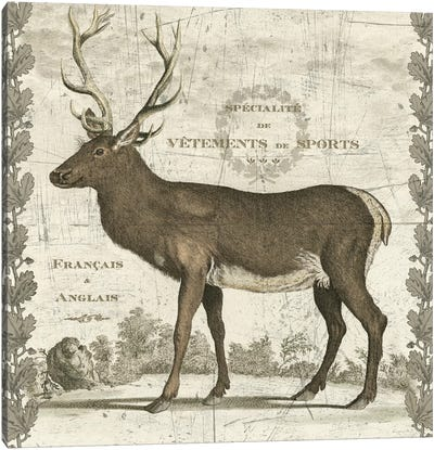 Regal Stag Canvas Art Print