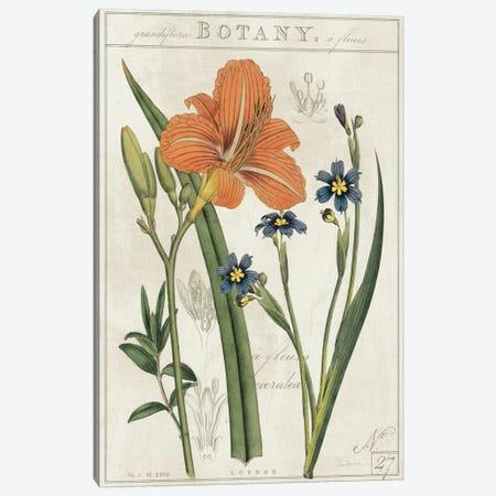 Vintage Flora II On Ivory Canvas Print #WAC5275} by Sue Schlabach Canvas Wall Art