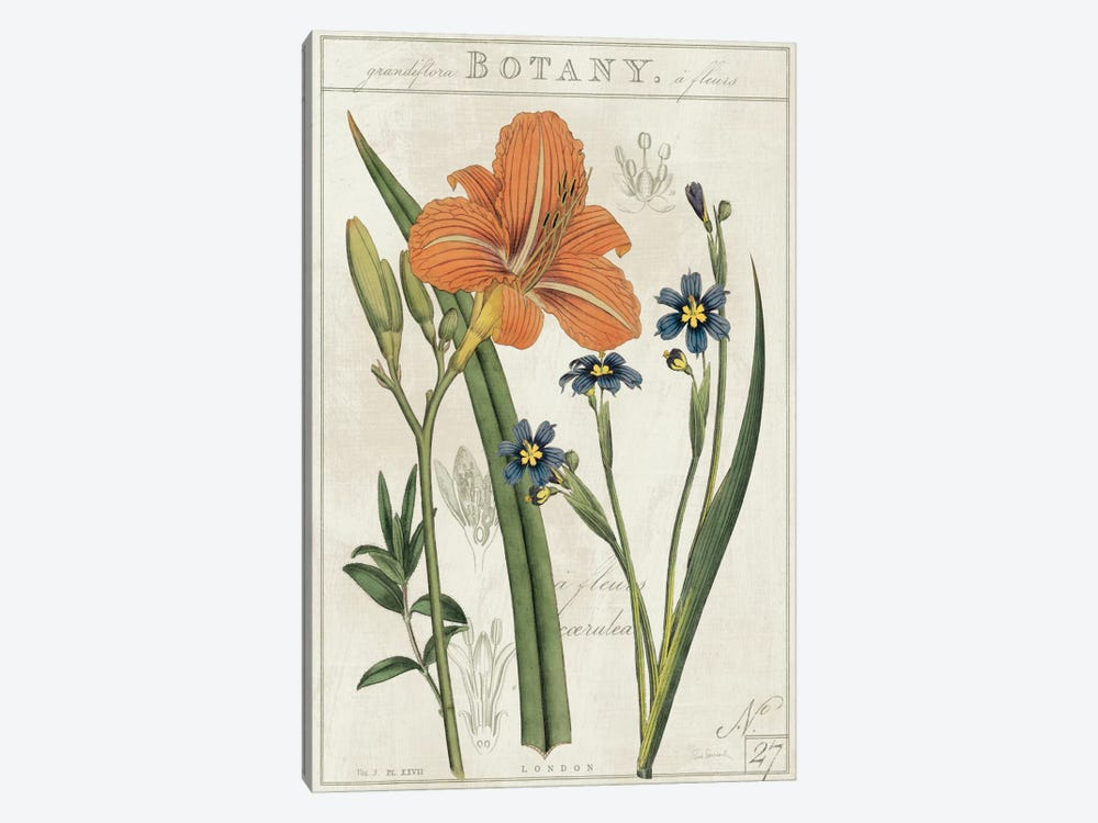 Vintage Flora II On Ivory by Sue Schlabach 1-piece Art Print