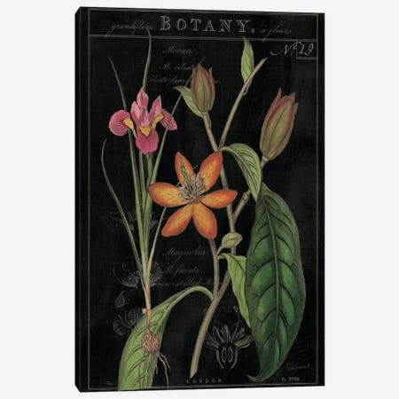 Vintage Flora III On Black Canvas Print #WAC5276} by Sue Schlabach Canvas Artwork