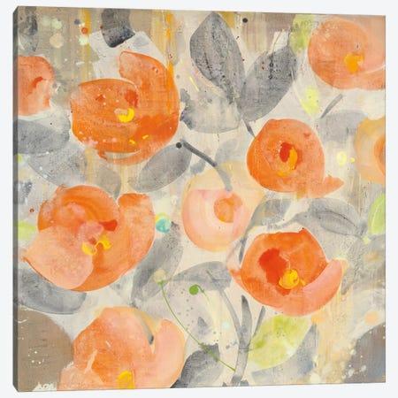 Poppy Garden I Canvas Print #WAC5281} by Albena Hristova Canvas Art