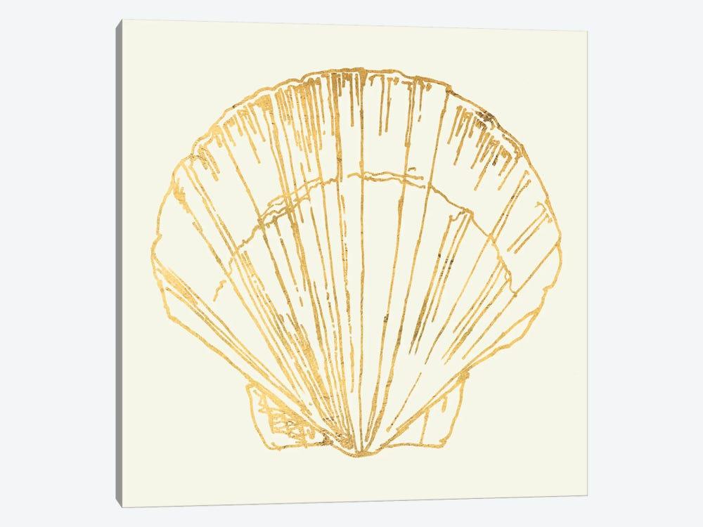 Coastal Breeze Shell Sketches V by Anne Tavoletti 1-piece Canvas Wall Art