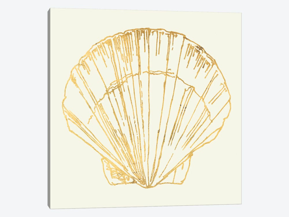 Coastal Breeze Shell Sketches V by Anne Tavoletti 1-piece Canvas Wall Art