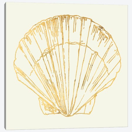 Coastal Breeze Shell Sketches V 3-Piece Canvas #WAC5283} by Anne Tavoletti Canvas Art