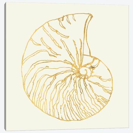 Coastal Breeze Shell Sketches VII Canvas Print #WAC5285} by Anne Tavoletti Canvas Print
