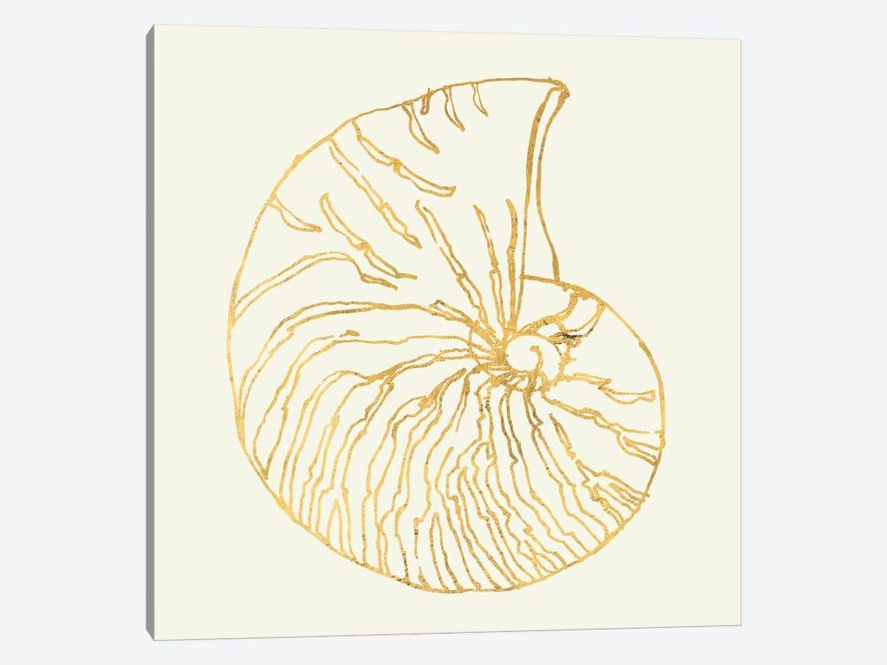 Coastal Breeze Shell Sketches VII by Anne Tavoletti 1-piece Canvas Art
