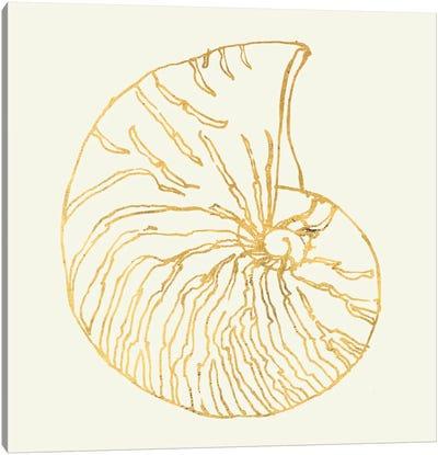 Coastal Breeze Shell Sketches VII Canvas Print #WAC5285