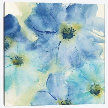Seashell Cosmos I Canvas Print #WAC5291} by Chris Paschke Art Print