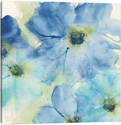 Seashell Cosmos I Canvas Art Print