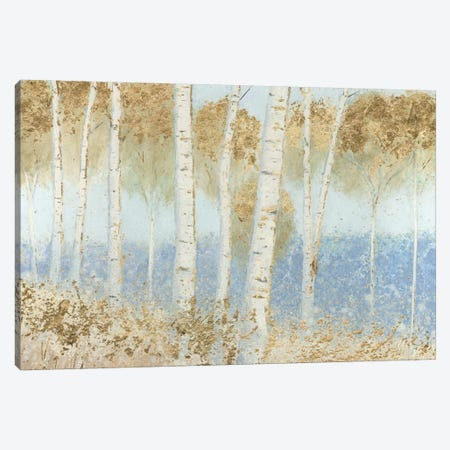 Summer Birches Canvas Print #WAC5312} by James Wiens Canvas Art