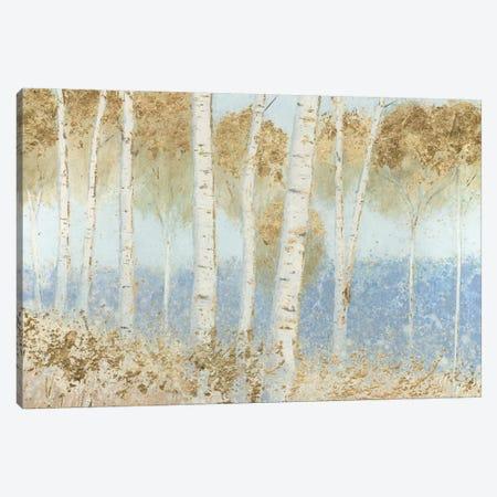 Summer Birches Canvas Print #WAC5312} by James Wiens Canvas Art