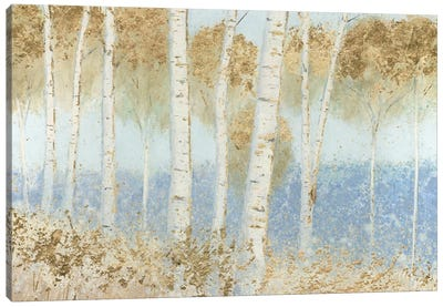 Summer Birches Canvas Art Print