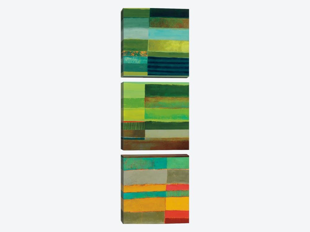Fields Of Color I by Jane Davies 3-piece Canvas Art