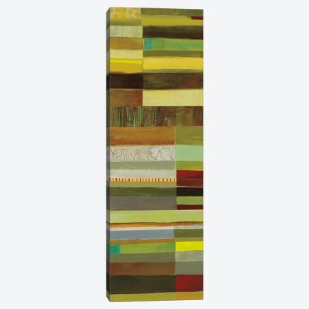 Fields Of Color III Canvas Print #WAC5315} by Jane Davies Art Print