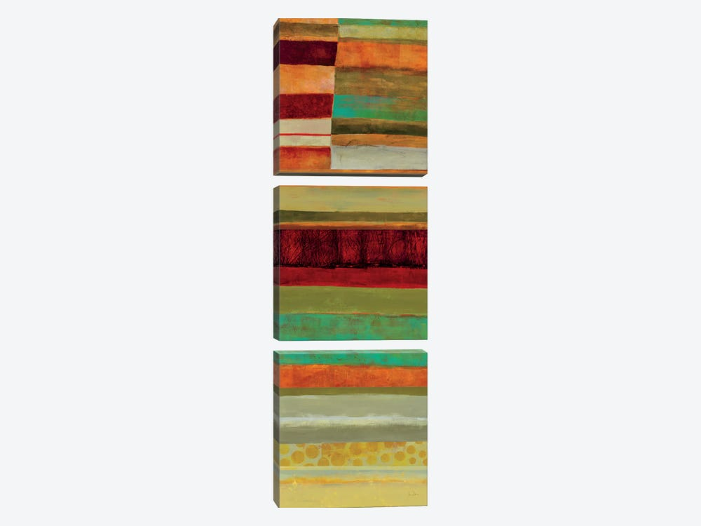 Fields Of Color V by Jane Davies 3-piece Canvas Art