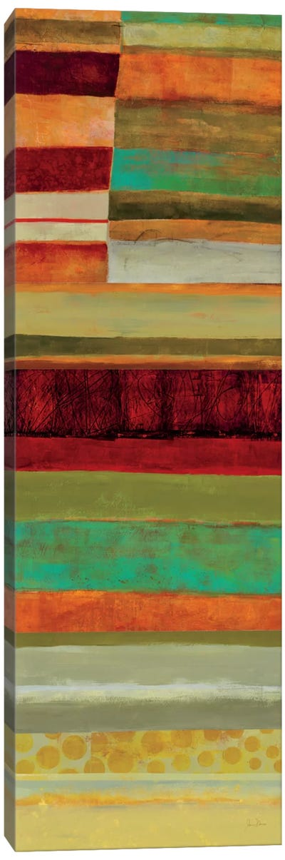 Fields Of Color V Canvas Art Print