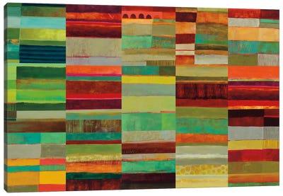 Fields Of Color VIII Canvas Art Print