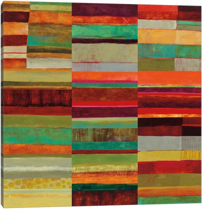 Fields Of Color IX Canvas Art Print