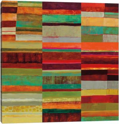 Fields Of Color IX Canvas Print #WAC5320