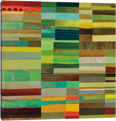 Fields Of Color X Canvas Print #WAC5321