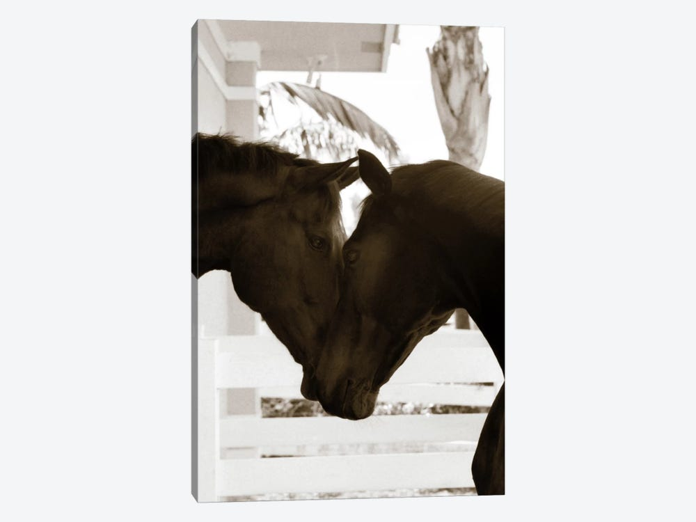 Good Friends by Jim Dratfield 1-piece Canvas Print