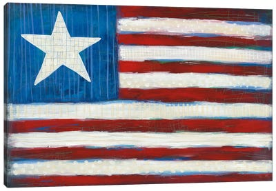 Modern Americana Flag Canvas Art Print