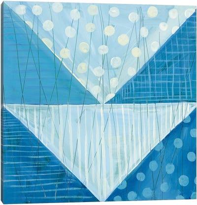 Modern Americana IX Canvas Print #WAC5364