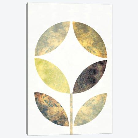 Golden Flower II Canvas Print #WAC5371} by Michael Mullan Canvas Wall Art